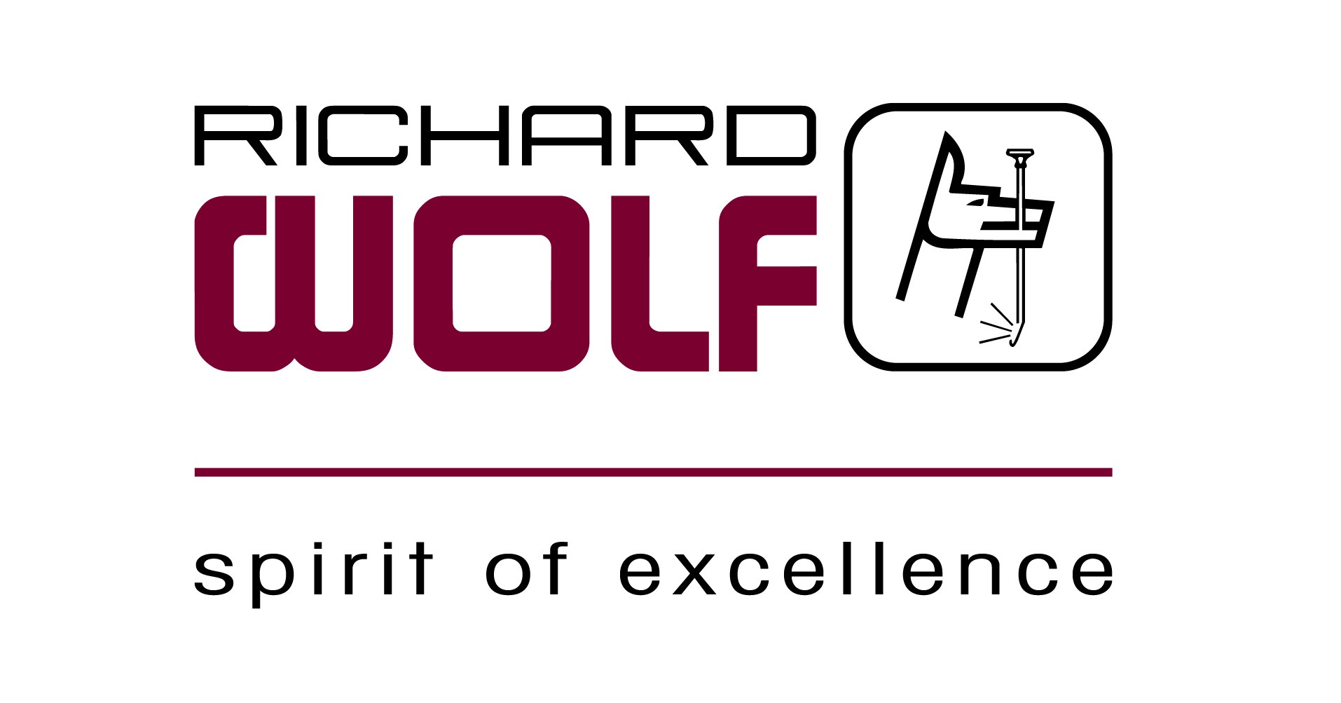 richard-wolf